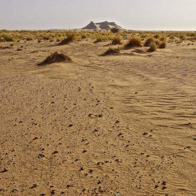 Tuareg Niger 2012